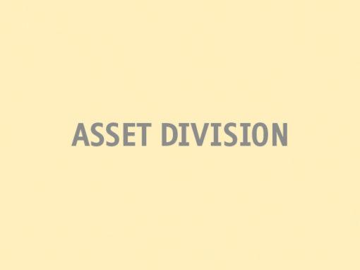 Asset Division