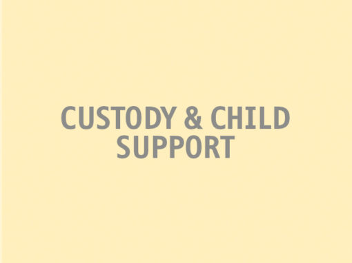 Custody & Child Support